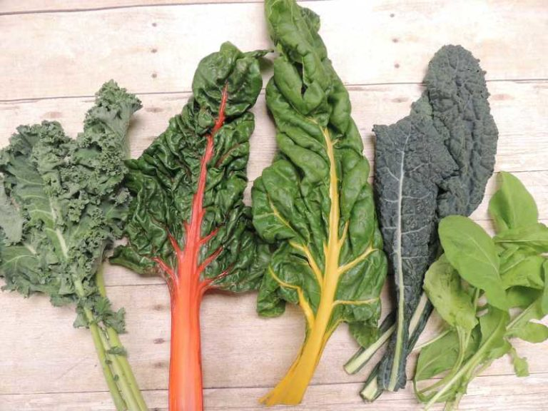 kale-swiss-chard-arugula-vegetable